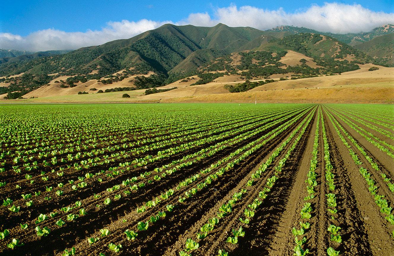 Toro Agriculture Irrigation